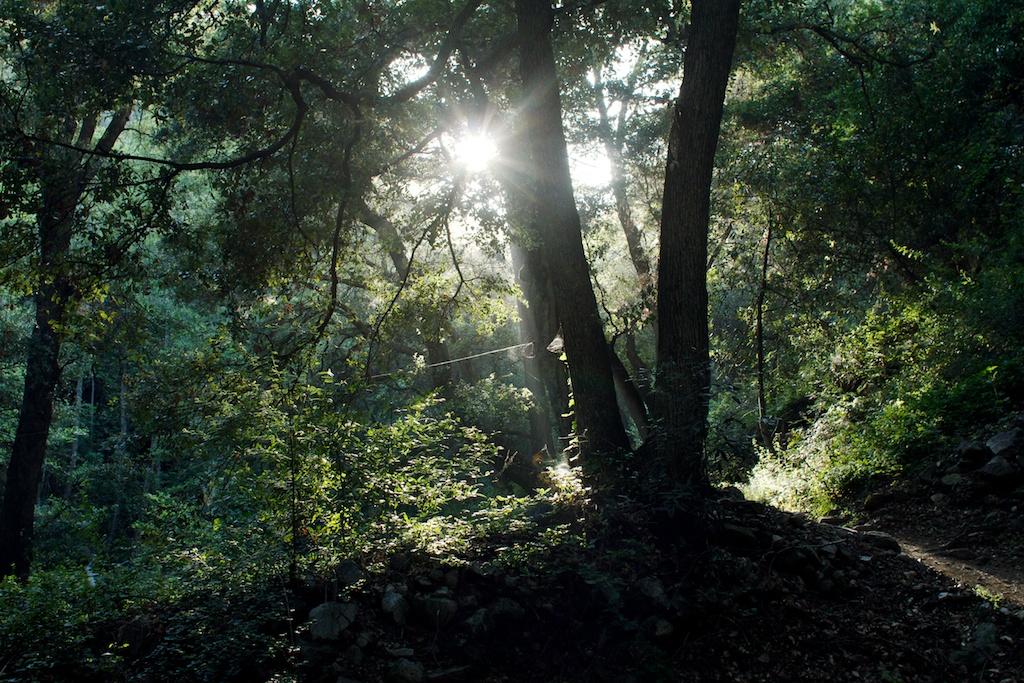 hiking 181