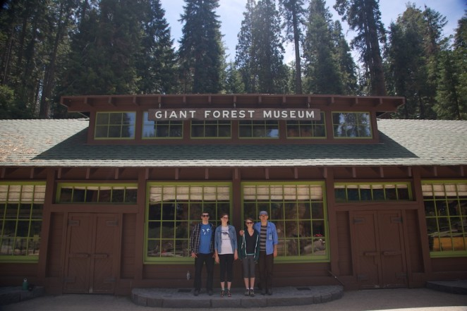 giant forest museum