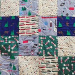 camping quilt 1