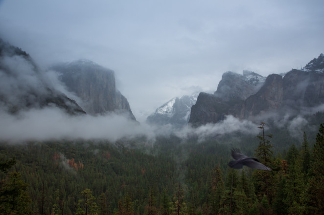 yosemite winter-1